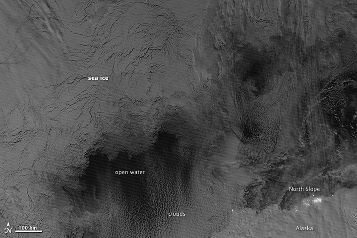 VIIRS_daynight_seaice